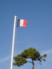 Frenchflag_1